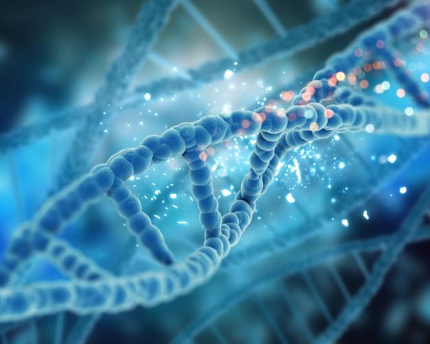 Plano de saúde deve pagar exame genético de diagnóstico de autismo e terapias 626x500